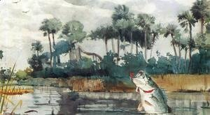 Winslow Homer - Black Bass, Florida
