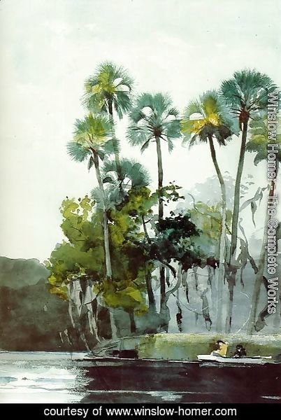Winslow Homer - Homosassa River