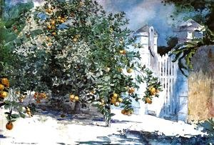 Winslow Homer - Orange Tree, Nassau (or Orange Trees and Gate)