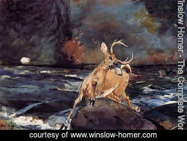 Winslow Homer - A Good Shot, Adirondacks