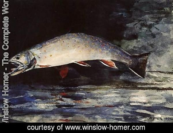 Winslow Homer - A Brook Trout