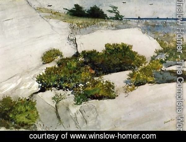 Winslow Homer - Maine Cliffs