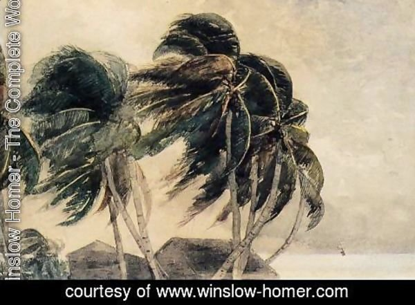 Winslow Homer - A Norther - Key West