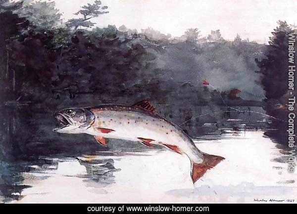 Leaping Trout I