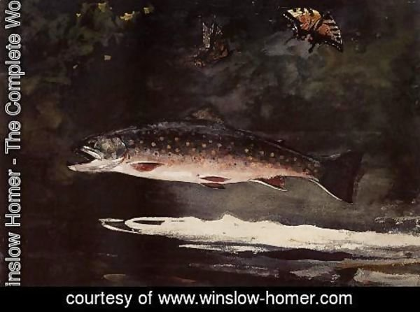 Winslow Homer - Trout Breaking