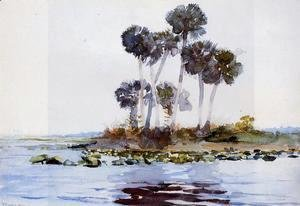 Winslow Homer - St. John's River, Florida I