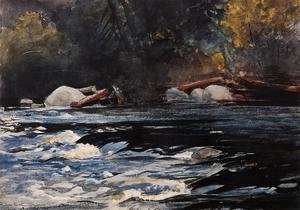 Winslow Homer - The Rapids, Husdon River, Adirondacks