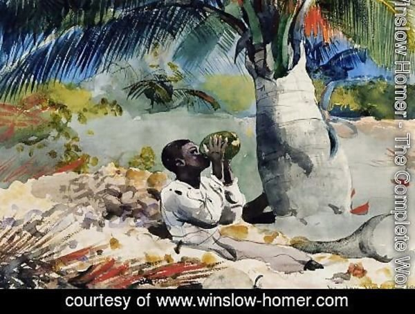 Winslow Homer - Under the Coco Palm