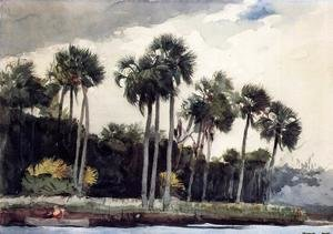 Winslow Homer - Red Shirt, Homosassa, Florida
