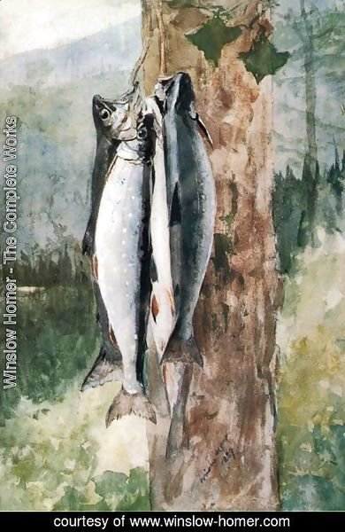 Winslow Homer - Adirondack Catch