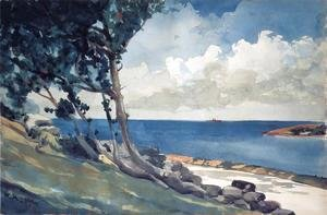 Winslow Homer - North Road, Bermuda
