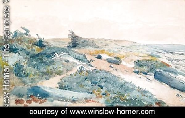 Winslow Homer - Prout's Neck, Maine