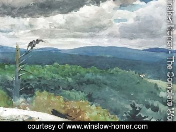 Winslow Homer - Hilly Landscape