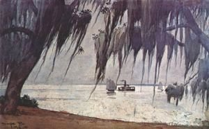 Winslow Homer - Spanish moss at tampa