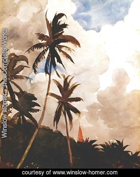 Winslow Homer - Palm trees (Bahamas)